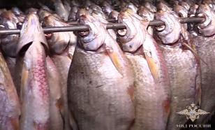 Вяленая рыба может оказаться с сюрпризом