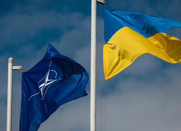 Зеленский: членство в НАТО - единственный шанс сохранить страну
