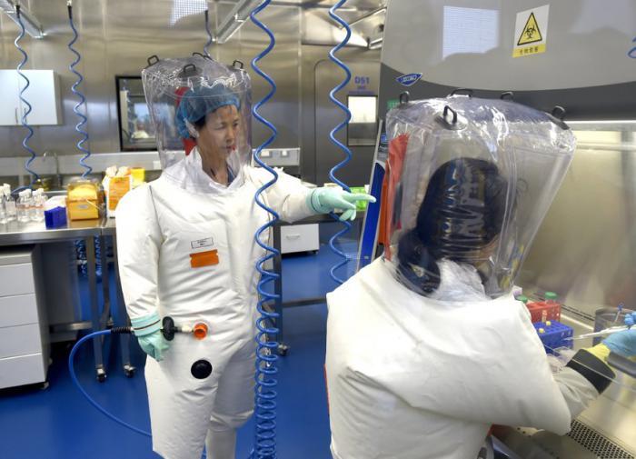 Вирусолог из США бьёт тревогу: новый лабораторный вирус погубит планету