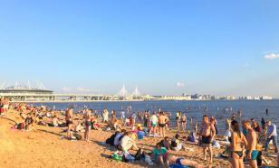 На пляжах Санкт-Петербурга лучше не купаться