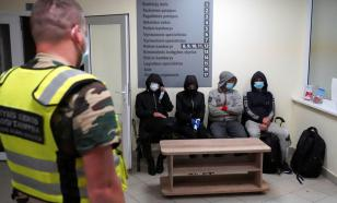 Эксперт рассказал, зачем нужна истерика Литвы в отношении мигрантов