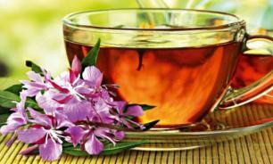 Иван-чай: полезные свойства