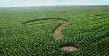 Владимир Джаралла: В условиях кризиса сельское хозяйство Украины работает по инерции