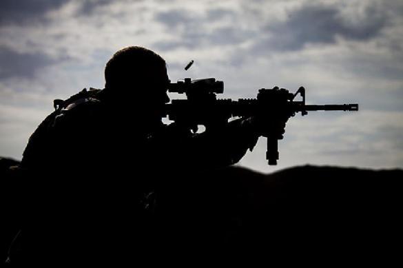 "НАТО ""наелся"" немецким оружием"