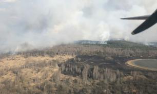 Россия предложила помощь Киеву в тушении лесных пожаров в Чернобыле