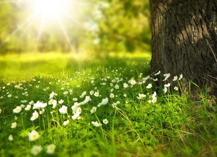Какие болезни обостряются летом, рассказали медики
