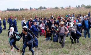 Оператор венгерского канала была уволена за то, что пыталась остановить мигрантов