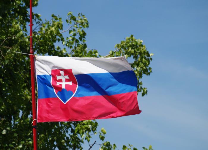 Украина сильно обиделась на Словакию за шутку о Закарпатье