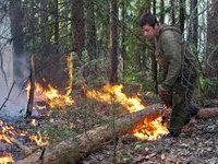 Количество природных пожаров в России растет.