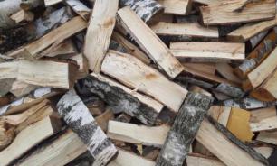 В селе под Саратовом мужчина погиб при заготовке дров на зиму