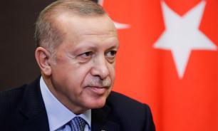 Эрдоган завёл Telegram-канал и запостил фото котика