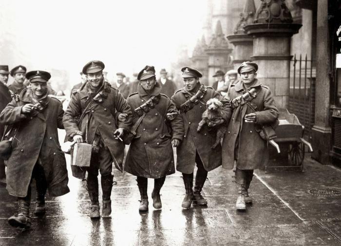 Названа новая версия высокой смертности в Первой мировой войне