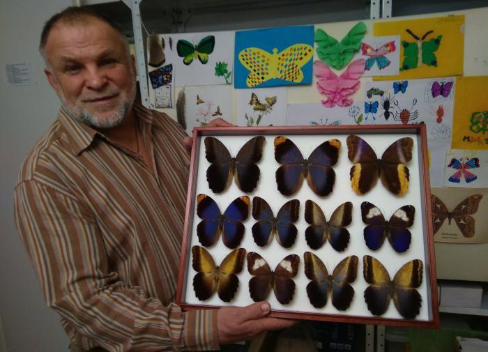 Какие опасности подстерегают охотника за бабочками