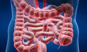 Новое лечение воспалений кишечника разрабатывается немецкими учеными