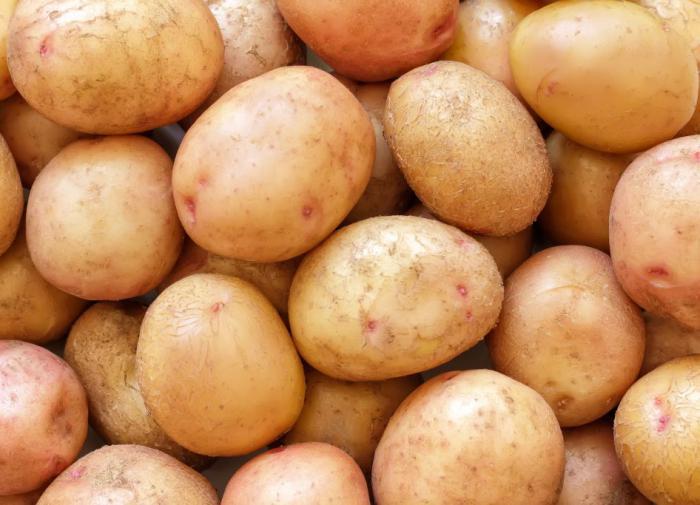 Специалисты назвали главную ошибку при варке картофеля