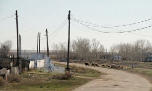 Жители села Ольгинка в Казахстане заболели сибирской язвой