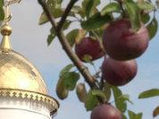"""Зачем Церкви """"золотые купола""""?"""