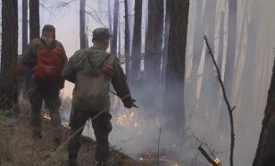 Военные помогут в борьбе с лесными пожарами в Туве