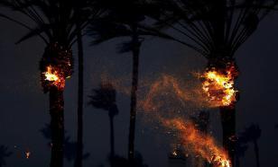 В турецкой Анталье из-за лесного пожара пострадало более 50 человек