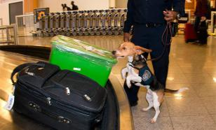 УБН США платит Таможенной службе аэропортов 10% от конфискованных из багажа пассажиров наличных