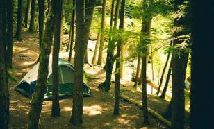 От кредитов начали убегать в лес и жить годами в шалаше