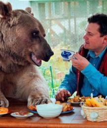 Американец подружился с медведем