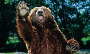 Медведь попытался напасть на женщину, но она напугала его криком
