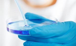 Доказано: нулевой коронавирусный пациент был во Франции в декабре