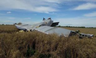 В Ленобласти при крушении самолёта погибли три человека