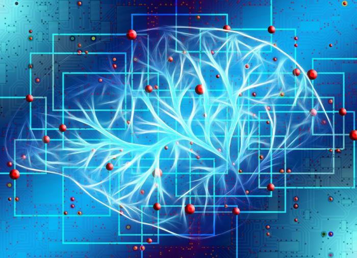 Эксперты нашли механизм, формирующий воспоминания