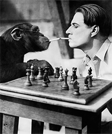 Кто умнее - человек или животное?