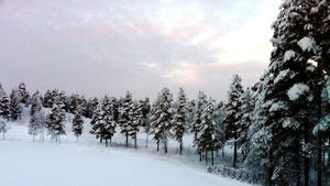 В чертогах Снежной Королевы