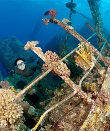 Тайны затонувших кораблей Красного моря