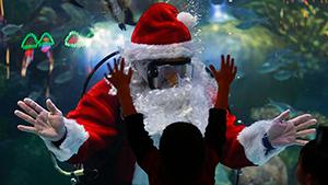 Работе Санта-Клауса не позавидуешь