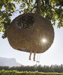 Хочу жить на дереве!