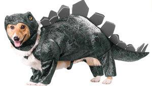 Собачий прикид для Хэллоуина