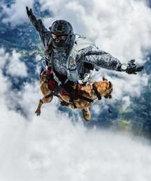Летающий пес