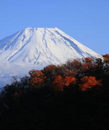 Мы буквально живем на вулканах