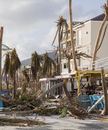 Зона стихийного бедствия и грабежей