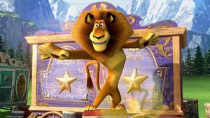 """Мадагаскар 3"": кадры из фильма"