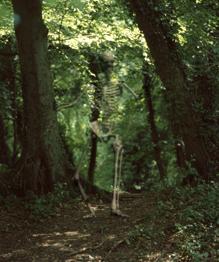 8 призраков вокруг нас