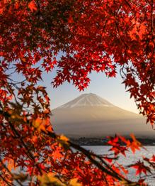Фудзи. Священная гора Японии
