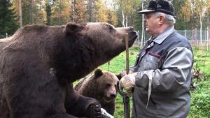 Медвежья семья. Папа - человек