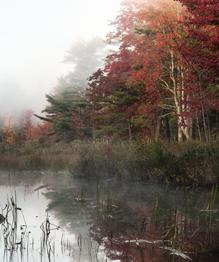 Осень — она и в Африке осень
