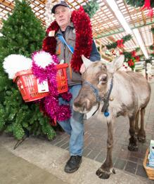 Не Санта-Клаус, но с оленем