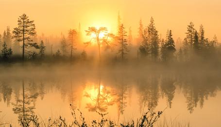 Финляндия: Наша общая природа и история