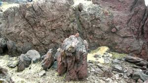 Страна застывшей лавы
