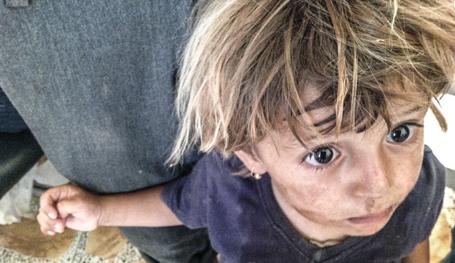 Великие демократические ценности США в Ираке. Фотодоки