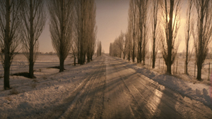 Россия - это ли не рай?