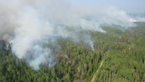 Площадь пожаров в Сибири уменьшилась из-за дождей